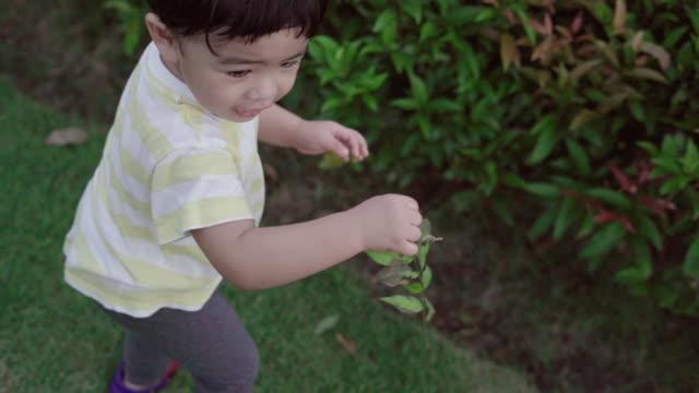 süsser boy spielen und wandern im garten - gemeinsam gehen stock-videos und b-roll-filmmaterial