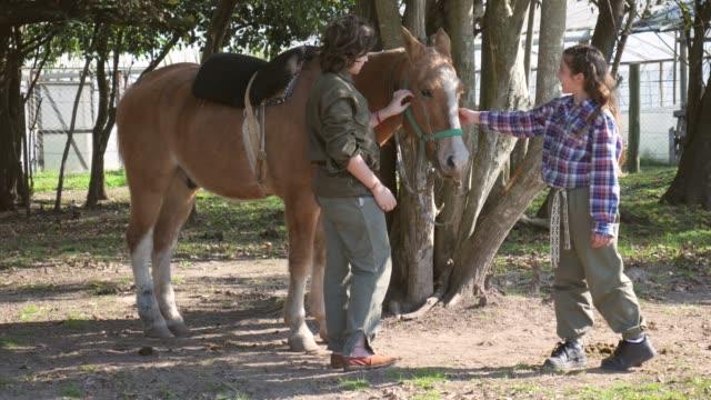 vídeos de stock, filmes e b-roll de irmão bonito e irmã que zoológico um cavalo em um sorriso da exploração agrícola - montar um animal