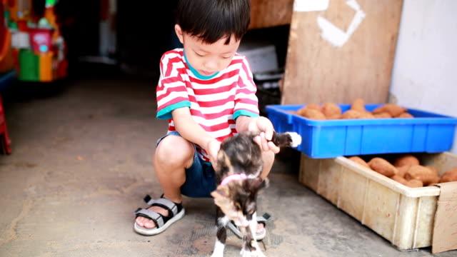 かわいい子供、猫 - 胡同点の映像素材/bロール