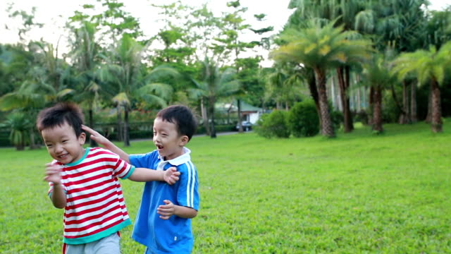 cute children playing in the park - sibling stock videos and b-roll footage