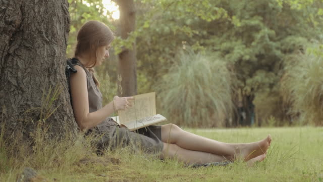 cute girl in a dress sits under a tree and reads a book about plants - zona arborea video stock e b–roll