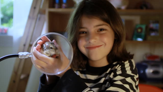 vídeos de stock e filmes b-roll de ms cute girl proudly shows off her very active pet hamster in front of magnifying glass / los angeles, california, united state - amimar