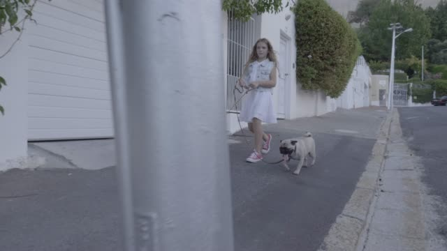 Cute girl walking with pug and Yorkshire Terrier on footpath