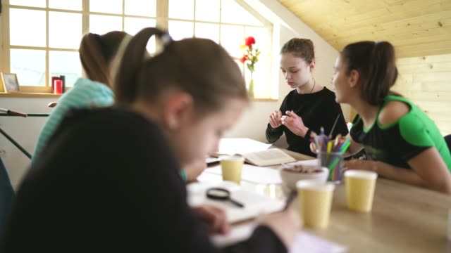 vidéos et rushes de étudiants mignons de filles sur la classe privée - cours de mathématiques