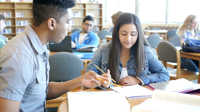Cute Indian high school freshman being tutored in library by senior