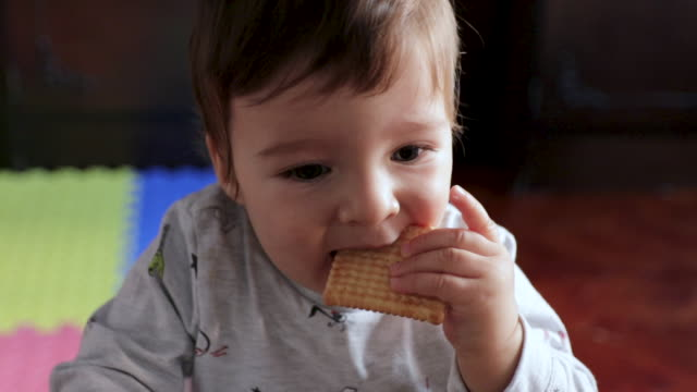 cute little boy standing in living room and eating cookie. baby boy without teeth trying to eat cookie in living room early in the morning. sweet breakfast is best breakfast - holding stock videos & royalty-free footage