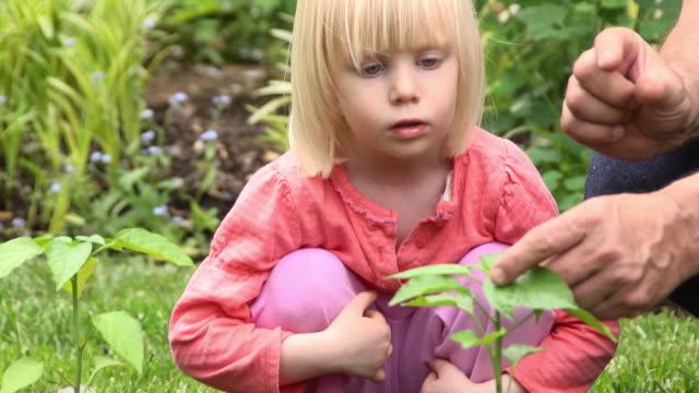 Cute Little Girl Gets a Gardening Lesson