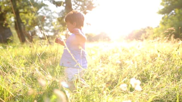 Niedliche kleine Mädchen gehen auf einer Wiese.