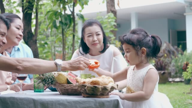 cute little girl with her family while enjoy cooking food at the garden - genderblend stock videos & royalty-free footage