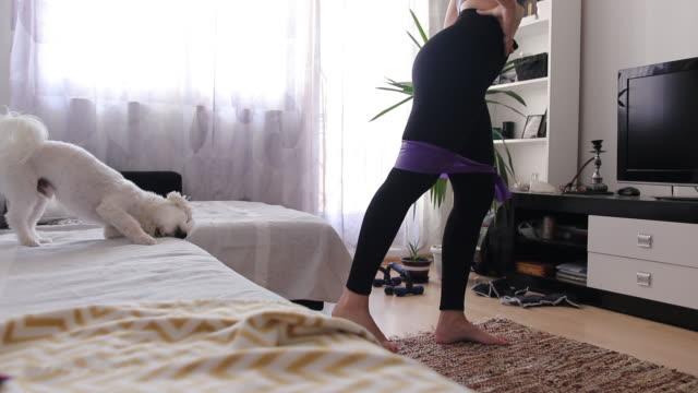 stockvideo's en b-roll-footage met leuke maltese hond die op bed ontspant terwijl de vrouw die thuis met weerstandsband uitwerkt - oefeningen met lichaamsgewicht