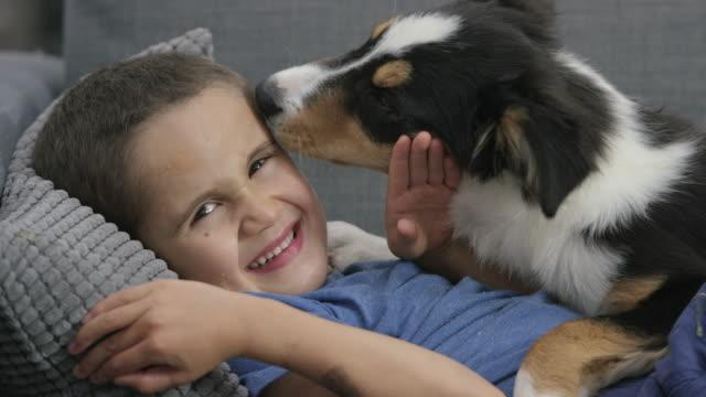 Cute Puppy Licking Boy's Face