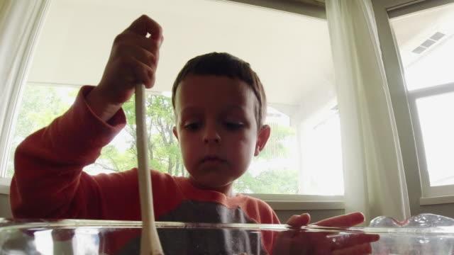 vídeos de stock, filmes e b-roll de um menino caucasiano dos anos de idade seis bonito usa uma colher de madeira para misturar ingredientes molhados e secos junto em uma grande, bacia de vidro ao cozer em uma cozinha dentro - fazer