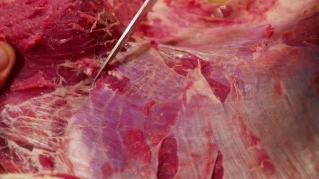 vídeos de stock e filmes b-roll de cutting beef in paris, france - amanhar o peixe
