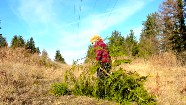 Cutting Christmas tree in forest