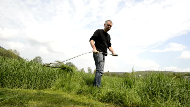 cutting grass with a scythe hd real time - scythe stock videos and b-roll footage