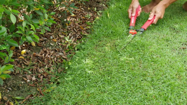 cutting grass with scissor - prune stock videos & royalty-free footage