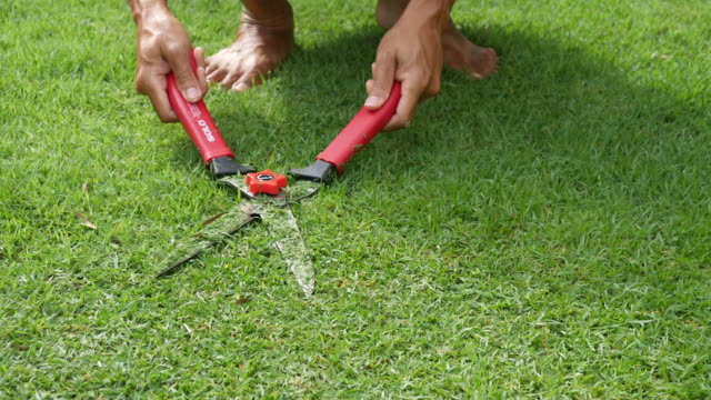 cutting grass with scissor - gardening equipment stock videos & royalty-free footage