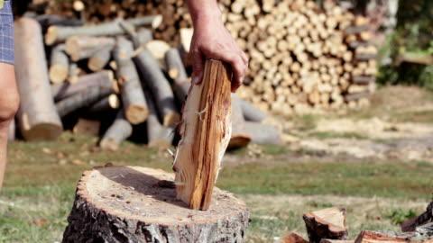 schneiden von brennholz - baumstumpf stock-videos und b-roll-filmmaterial