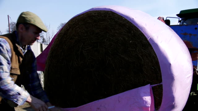cutting open a silage bale - bale stock videos & royalty-free footage