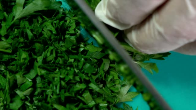 cutting parsley - parsley stock videos and b-roll footage