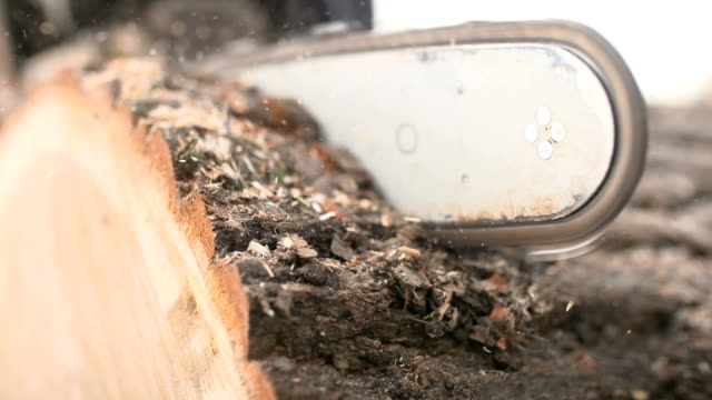 cutting through wood with chainsaw in slow motion. - log stock videos & royalty-free footage