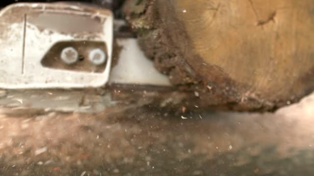 Taglio attraverso il legno con motosega in al rallentatore.