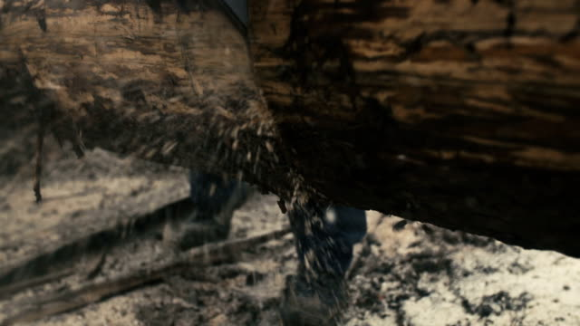 Taglio attraverso il legno con motosega in Super al rallentatore.