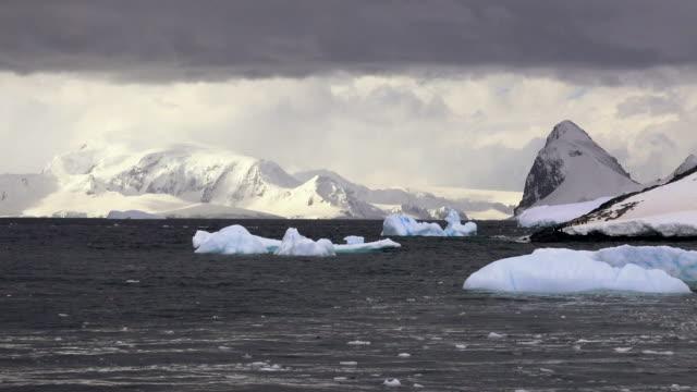cuverville, antarctic peninsula, southern ocean - antarctic peninsula stock videos & royalty-free footage