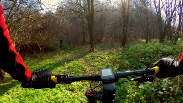 POV Cycling in the forest.