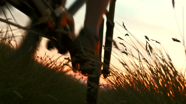hd: bicicletta in prato al tramonto - andare in mountain bike video stock e b–roll