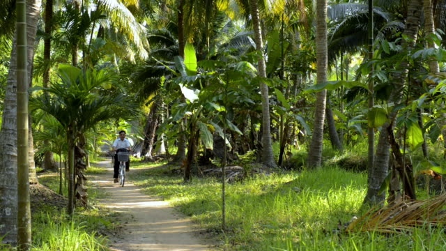 cycling in the mekong delta, vietnam - footpath stock videos & royalty-free footage