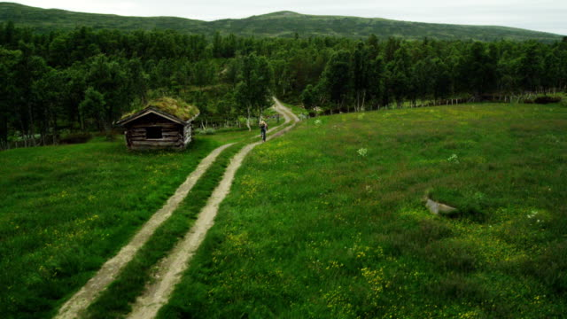 cycling in the wilderness. old cabin. drone point of view - hut stock videos & royalty-free footage