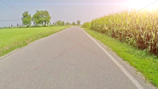 Cycling on empty country road in summer time