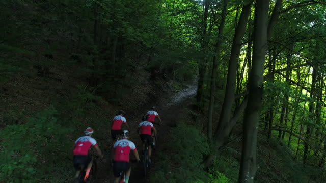 cycling through woodland - cycling event stock videos & royalty-free footage