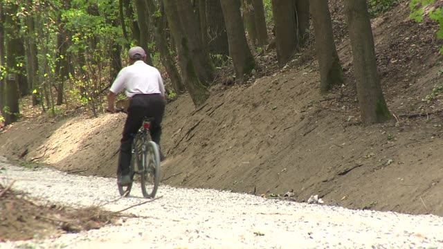 stockvideo's en b-roll-footage met cyclist on a forest path - plant attribute