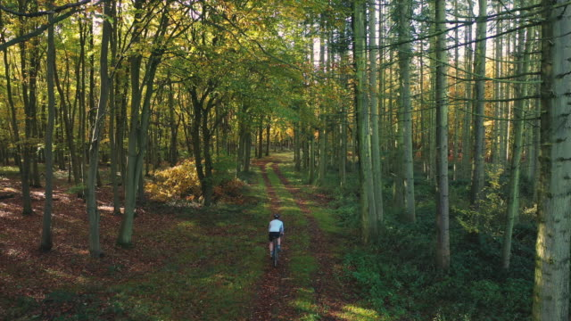 cyclist on woodland track - bicycle trail outdoor sports stock videos & royalty-free footage