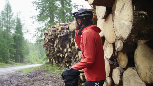 cyclist taking a break near cut trees checking cell phone - cycling helmet stock videos & royalty-free footage