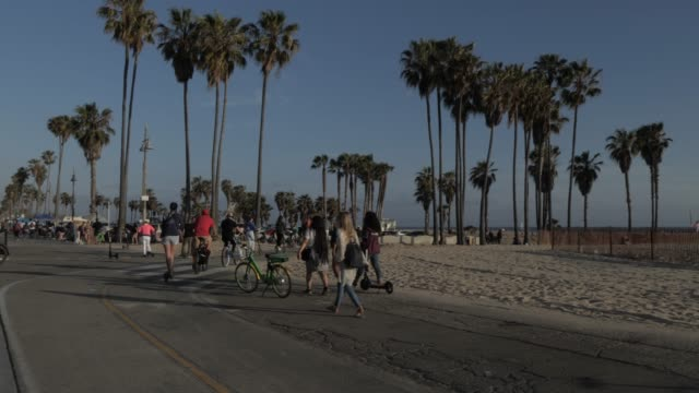cyclists on beach path at venice beach, santa monica, los angeles, california, united states of america, north america - santa monica los angeles video stock e b–roll