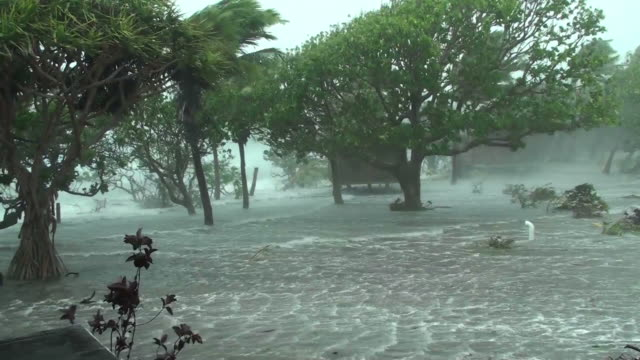 cyclone storm surge - isole del pacifico video stock e b–roll