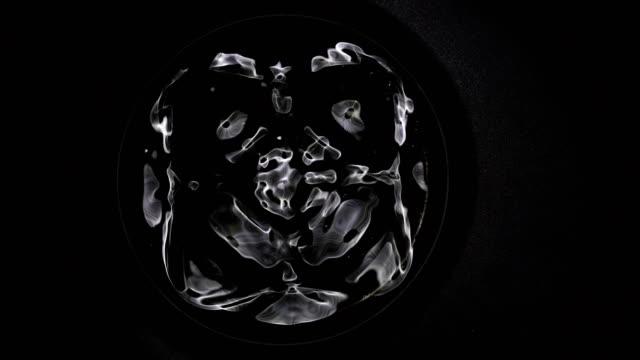 cymatic patten of water - vergrößerung stock-videos und b-roll-filmmaterial