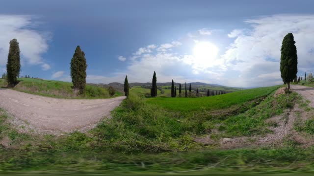 360 VR / Cypress avenue with view to Val d`Orcia