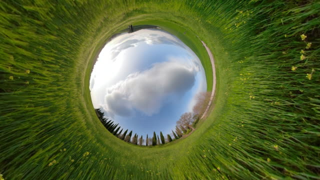 zi / cypress trees on green meadow with little planet effect - image stock videos & royalty-free footage