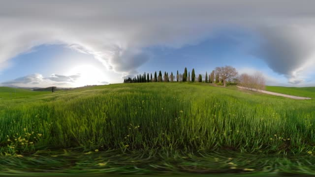 360 vr / cypress trees on tuscany hill - 360 video stock videos & royalty-free footage
