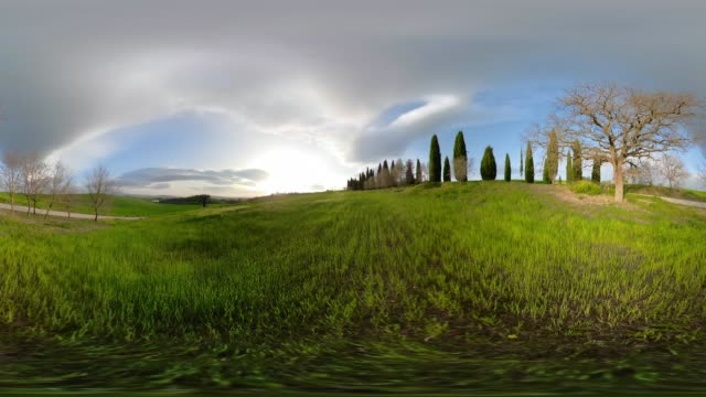 360 VR / Cypress trees on tuscany hill