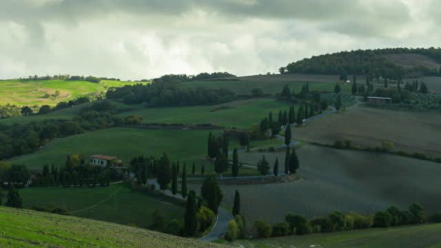 Cypresses along a curving road in Tuscany near Al Foce, Italy