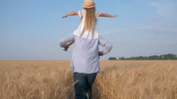 dad and child girl play outdoors, happy father carries little daughter in straw hat and white dress on his shoulders which makes plane spreading her hands to sides in harvest golden grain field
