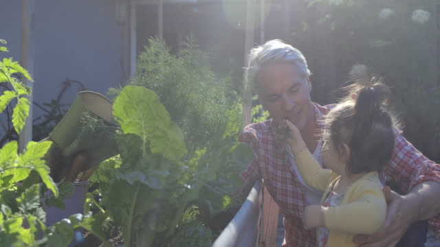 dad and daughter gardening - modern manhood stock videos & royalty-free footage