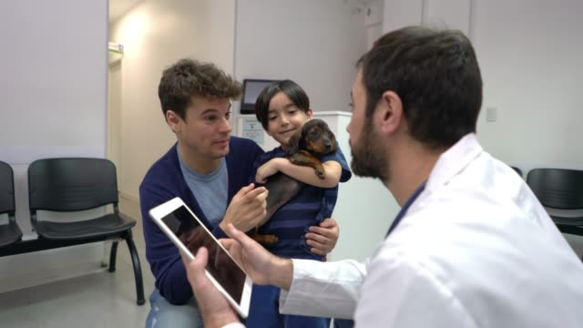 dad and son taking the puppy to a vet's consult talking to him while holding a digital tablet looking happy - veterinarian stock videos & royalty-free footage