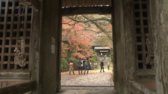 """""""Daikouzenji"""" is an old historical temple located at the foot of the mountain of Chigiri which is at the prefectural boundary between Fukuoka and..."""