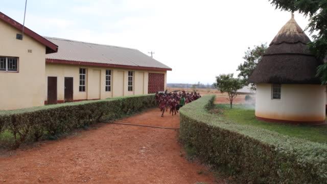 daily life in zimbabwe - repubblica dello zimbabwe video stock e b–roll